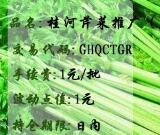 桂河芹菜推广(日)